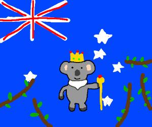 koala life goals