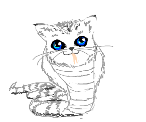 Kitty snake oh yeh