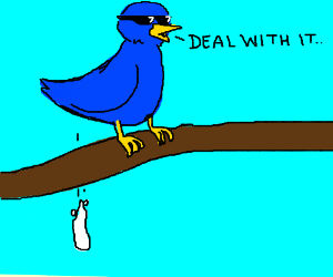 Deal w/ it says the chill bird