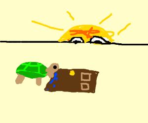 Turtle eating a door