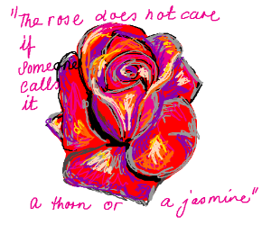 Red rose & quote