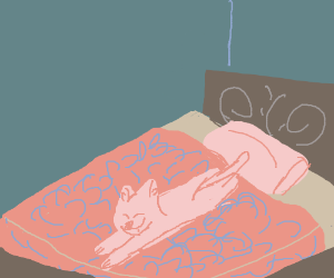 Cute long cat on bed