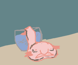 Blob fish fell out of his tank