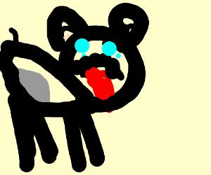Puppycat    P. I. O.