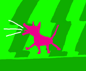 pink dog in green room