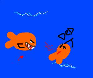 Cannibalistic goldfish