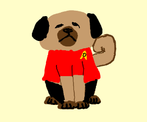pug wearing clothes! X3
