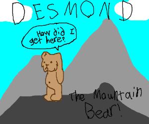DESMOND THE MOUNTAIN BEAR