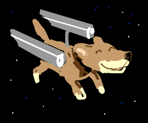 U.S.S Enterwoof!
