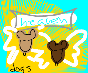 Dogs go to heaven you cnut
