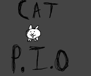 Cat P.I.O