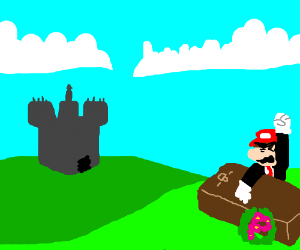Mario is angry cause he lost his wife peach