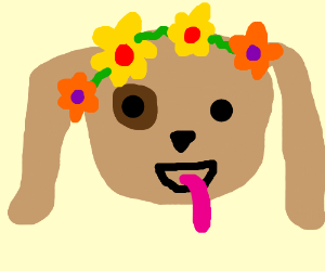 a dog decked out in flowers