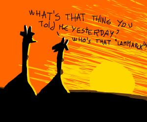 Two giraffes gaze at the sunset