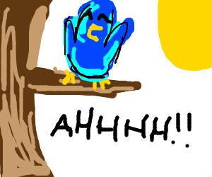 """Blue bird yelling """"AAAAHHHH"""""""