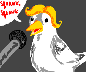 seagull talking on mic (yellow wig)