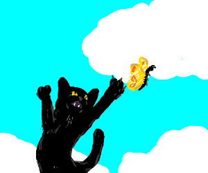 a black flying cat chaseing a butterfly