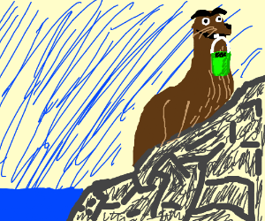 Gerald the Sea Lion claiming his rock