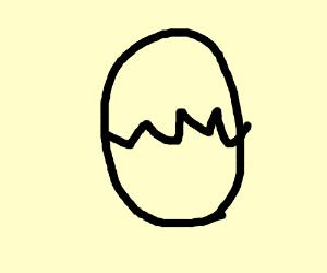 step 12: egg hatches