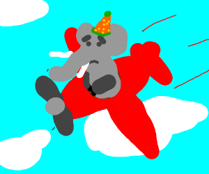 Worried elephant with silly hat flying a plane