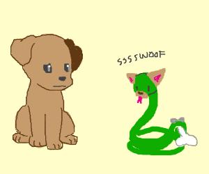 Snek thinks it's a dog