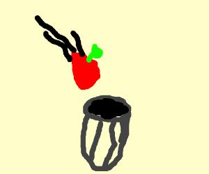apple=trash