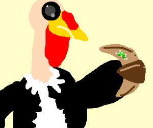 Turkey eating a moldy coissant