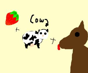 strawberry cow dog