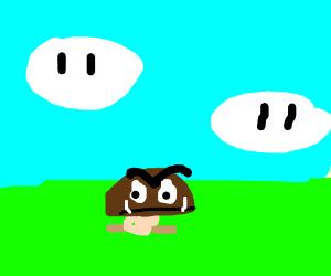 goomba (mario)