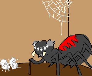 Grampa spider