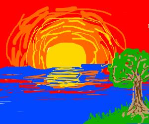 sun set and a tree