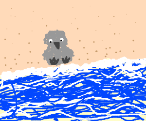 Ugly duckling on the beach