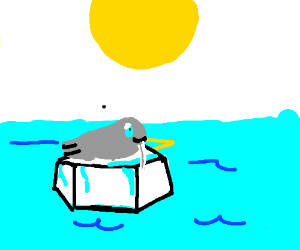 a walrus on ice
