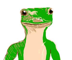 Insurance Company Gecko