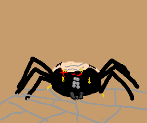 a spider that is bald, mad, and sweaty.