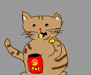 An overweight cat munches on Lays