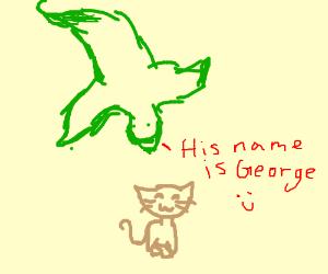 Dragon Has a Pet Cat