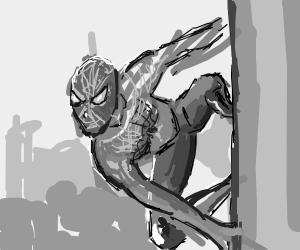 gray scale spooderman