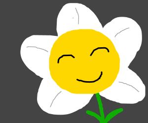 white flowey the flower
