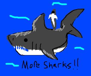 More sharks... MORE SHARKS!!!!!!!!!!
