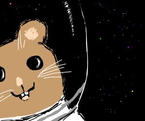 SPACE HAMSTER!