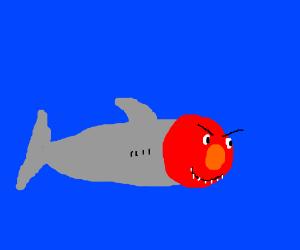 Elmo shark