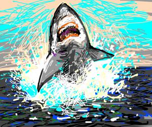 How to get top: Draw a good shark - Drawception