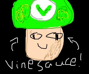 Vinesauce