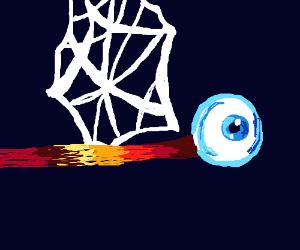 eyeball stuck in a spider net