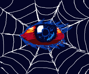 eye spider web
