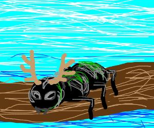 Antlers on Ants head..