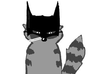 Racoon Batman
