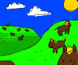 10 Jolly Horses
