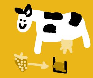 Cow Makes strawberry milk
